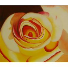 """""""Желтая роза"""", холст, масло, 50х60см"""