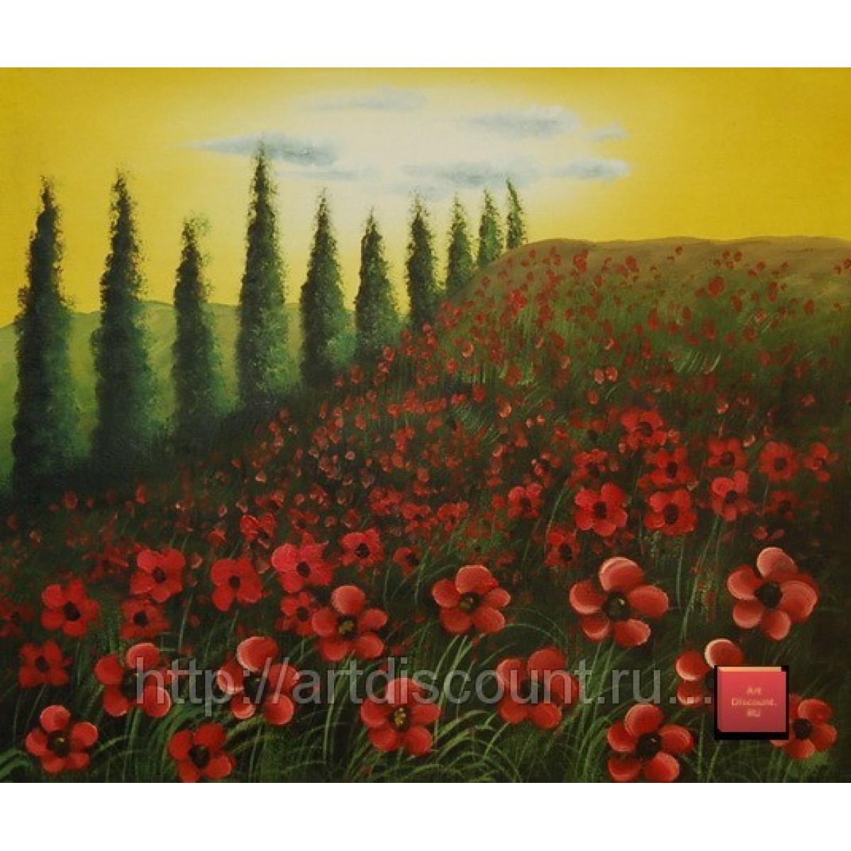 "Картина ""Поле цветов"" холст, масло, 50х60см"