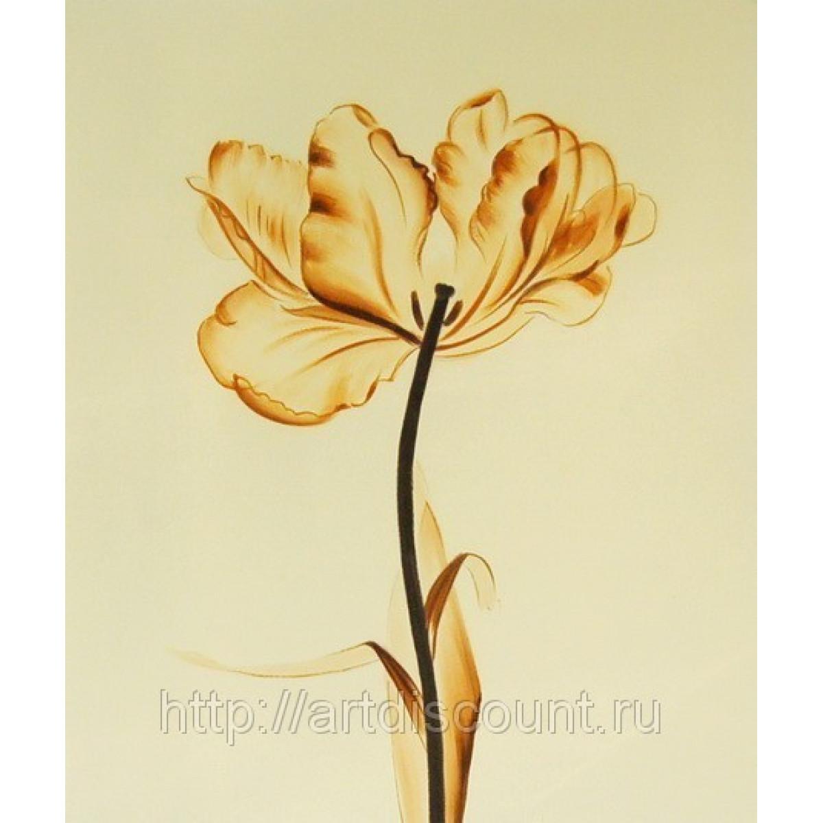 "Картина ""Воздушный цветок"" холст, масло, 50х60см"