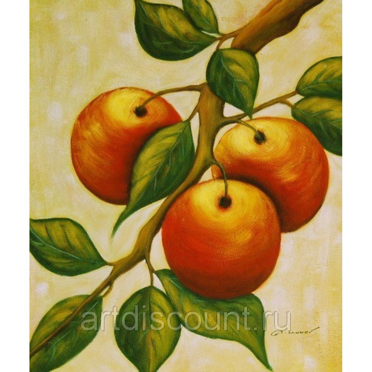 """Картина """"Яблоки"""" холст, масло, 50х60см"""