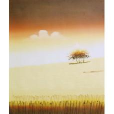 """Картина """"Австралия 2"""" , холст, масло, 50х60см"""